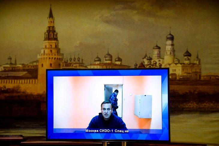 navalny amnesty international